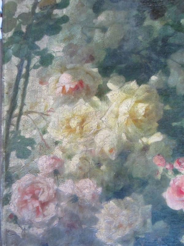 roses avant nettoyage